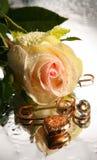 El corazón del día de tarjeta del día de San Valentín y se levantó Fotos de archivo libres de regalías