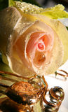El corazón del día de tarjeta del día de San Valentín y se levantó Imagen de archivo