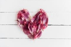 El corazón del flor rojo del tulipán se va en un fondo de madera blanco Foto de archivo