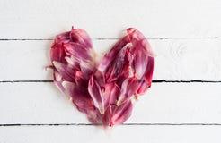 El corazón del flor rojo del tulipán se va en un fondo de madera blanco Imagen de archivo libre de regalías