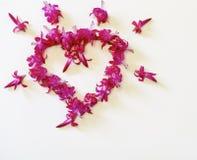 El corazón, el corazón de flores, celebración, amor Imágenes de archivo libres de regalías