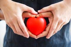 El corazón rojo llevado a cabo por las ambas manos masculinas y de la hembra, representa las manos amigas, se ayuda, amor, socied imagen de archivo libre de regalías