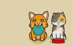 El Corgi y el gato los necesitan comida Imagen de archivo libre de regalías