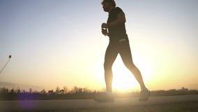 El corredor de la tarde bebe el agua en el paisaje granangular de la puesta del sol metrajes
