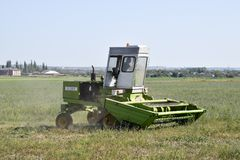 El cortacéspedes en el campo siega la hierba para el heno Fotos de archivo libres de regalías