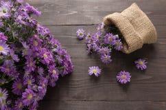 El cortador púrpura florece en el saco, en el fondo de madera Foto de archivo