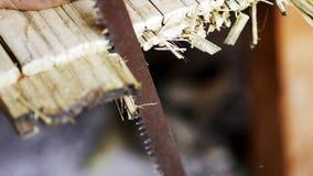 El corte de la sierra que está cortando el bambú imagen de archivo libre de regalías