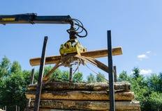 El corte del cargamento del cortador de la silvicultura abre una sesión el remolque de la pila foto de archivo