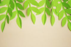 El corte del papel de las hojas texturizó el fondo con textura inconsútil de la sombra Tropical, hojas del verano Foto de archivo libre de regalías