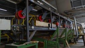 El corte longitudinal de la madera con una circular consideró Interior industrial en una fábrica de carpintería proceso de madera almacen de metraje de vídeo