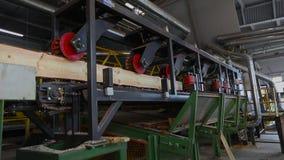 El corte longitudinal de la madera con una circular consideró Interior industrial en una fábrica de carpintería proceso de madera metrajes