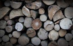 El corte transversal de troncos de árbol puede utilizar para el fondo Corte Tre Fotos de archivo libres de regalías