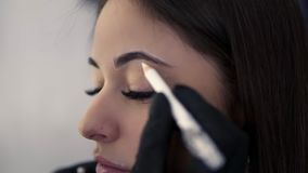 El cosmetologist profesional que prepara a la mujer joven para la ceja permanente compone el procedimiento en salón de belleza, d almacen de video