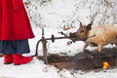 El Cossack ucraniano fríe un cerdo Imagenes de archivo
