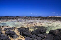 El Cotillo - Faro del Toston: Natural pools between black volcanic rocks and turquoise ocean horizon north Fuerteventura against stock photography