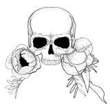 El cráneo con la peonía florece vector del gráfico del boho Fotografía de archivo