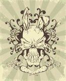 El cráneo de una liebre con los oídos en la carta fotografía de archivo libre de regalías