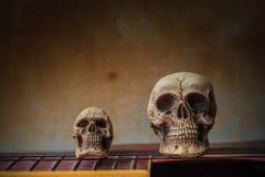 El cráneo en la guitarra Imagen de archivo libre de regalías