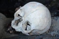 El cráneo en la tumba de la ciudad muerta, el Cáucaso septentrional, Chechenia Imagen de archivo