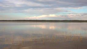 El crepúsculo de junio en el lago Puravesi finlandia metrajes