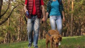 El criador con un perro y una hija adulta están caminando La familia viaja con un perro en el bosque Viajeros papá, hija metrajes