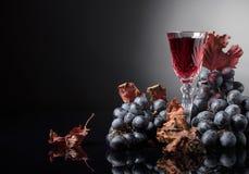 El cristal de vino rojo y de uvas con la vid secada se va imágenes de archivo libres de regalías