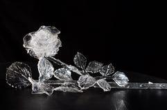 El cristal se levantó Foto de archivo libre de regalías