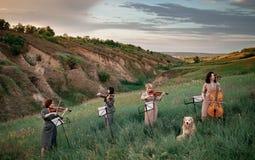 El cuarteto musical femenino con los violines y el violoncelo juega en prado floreciente al lado de perro que se sienta imágenes de archivo libres de regalías