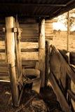 El cuarto de baño Fotos de archivo libres de regalías