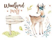 El cuarto de niños animal de los ciervos lindos del bebé aisló el ejemplo para los niños Dibujo del bosque del boho de la acuarel ilustración del vector