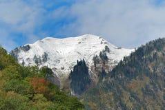 El Cáucaso. Abjasia (Abhazia). Mountain View del otoño Foto de archivo libre de regalías