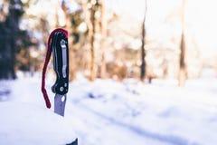 El cuchillo se pega hacia fuera en un árbol Fotografía de archivo libre de regalías