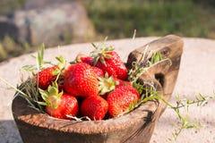 El cuenco de madera viejo llenó las fresas rojas maduras frescas jugosas en una piedra vieja vieja Foto de archivo libre de regalías