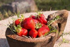 El cuenco de madera viejo llenó las fresas rojas maduras frescas jugosas en una piedra vieja vieja Fotos de archivo