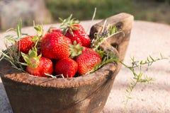 El cuenco de madera viejo llenó las fresas rojas maduras frescas jugosas en una piedra vieja vieja Fotos de archivo libres de regalías