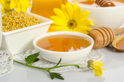 El cuenco de miel, cuenco con polen y flor amarilla Fotos de archivo libres de regalías