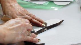 El cuero femenino del corte del zapatero junta las piezas en su taller almacen de video