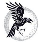 El cuervo de Odin en un círculo rúnico de estilo celta y del diseño ilustración del vector