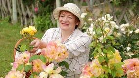 El cultivar un huerto alegre de la mujer del jubilado metrajes