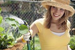 El cultivar un huerto bonito de la mujer Fotos de archivo
