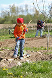 El cultivar un huerto de la muchacha Imagen de archivo