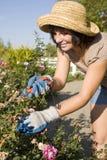 El cultivar un huerto de la mujer Foto de archivo libre de regalías