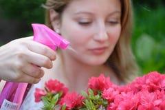 El cultivar un huerto de la mujer joven Imagen de archivo libre de regalías