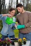El cultivar un huerto en primavera Foto de archivo libre de regalías