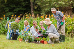 El cultivar un huerto feliz de la familia imagen de archivo