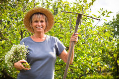 El cultivar un huerto feliz de la mujer Fotografía de archivo