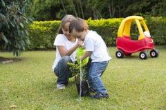 El cultivar un huerto feliz de los niños Fotografía de archivo libre de regalías