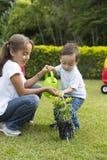 El cultivar un huerto feliz de los niños Imagen de archivo
