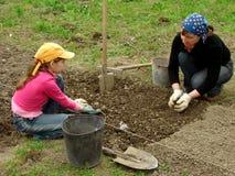 El cultivar un huerto junto Imagenes de archivo