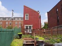 El cultivar un huerto urbano   Foto de archivo